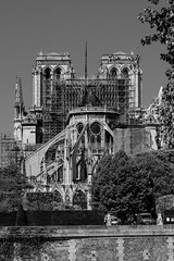 wounded but up (E. B. Sylvester) Tags: ebsylvester paris notre dame notredame cathedral standing beauty beautiful fire monday april 15th with love