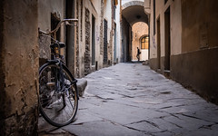 Florence (V Photography and Art) Tags: bicycle quietstreet street arch passerby florence firenze narrow buildings