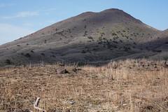 20190416a73_7306 (Gansan00) Tags: ilce7m3 α7ⅲ sony japan 大分 oita 日本 九重連峰 登山 landscape snaps ブラリ旅 04月 fe24105f4 trekking travelphotography