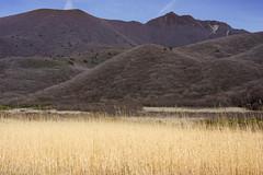 20190416a73_7287 (Gansan00) Tags: ilce7m3 α7ⅲ sony japan 大分 oita 日本 九重連峰 登山 landscape snaps ブラリ旅 04月 fe24105f4 trekking travelphotography
