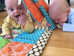"""Sam and Luc Have Tummy Time • <a style=""""font-size:0.8em;"""" href=""""http://www.flickr.com/photos/109120354@N07/40684255113/"""" target=""""_blank"""">View on Flickr</a>"""