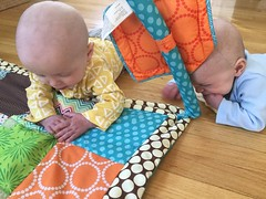 """Sam and Luc Have Tummy Time • <a style=""""font-size:0.8em;"""" href=""""http://www.flickr.com/photos/109120354@N07/40684255913/"""" target=""""_blank"""">View on Flickr</a>"""