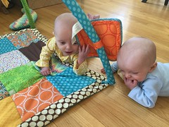 """Sam and Luc Have Tummy Time • <a style=""""font-size:0.8em;"""" href=""""http://www.flickr.com/photos/109120354@N07/40684256723/"""" target=""""_blank"""">View on Flickr</a>"""