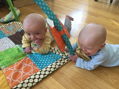 """Sam and Luc Have Tummy Time • <a style=""""font-size:0.8em;"""" href=""""http://www.flickr.com/photos/109120354@N07/40684259693/"""" target=""""_blank"""">View on Flickr</a>"""