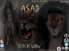 Asad avatar black (Alea Lamont) Tags: ndmd asad lion avatar omega skin appliers catwa vista signature belleza male head body slink ak
