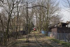 Lijn 26 in een spechtenbosje (Tim Boric) Tags: mysłowice tram tramway streetcar strassenbahn tramwaj interurban vicinal überlandbahn sgp e1 ztm