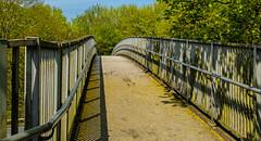 Footbridge (2) (Panasonic Lumix S1 & Lumix S 24-105mm f4) (1 of 1) (markdbaynham) Tags: panasonic lumix lumixer panasoniclumix panasonics panasonics1 s1 mirrorless mirrorlessfullframe fullframe fullframemirrorless ff 24105mm f4 zoom lumixszoom mirrorlesscamera panasoniclumixs1 digitalfullframe panasoniccamera panasonicmirrorlesscamera
