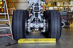 United Airlines Boeing 777-200 main landing gear. San Francisco Airport 2019. (planepics43) Tags: unitedairlines unitedexpress boeing 777 777200 landing gear sfo sanfranciscoairport landinggear airport aviation aircraft airplane planes planespotting pilot plane 17crossfeed claytoneddy tower takeoff taxi americanairlines deltaairlines sfoov southwestairlines 787 747 737 757 767