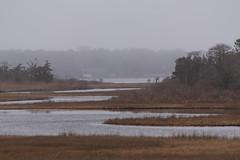 Mist over Parkers River (gdajewski) Tags: capecode d750 nikkor70300mmf4556 nikonafsnikkor70300mmf4556edvr nikond750 landscape water river gdajewski dajewski parkersriver fx fullframe