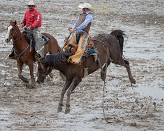 High River Rodeo 2018 (tallhuskymike) Tags: highriver rodeo event cowboy horse alberta action horses 2018 outdoors mud muddy guyweadickdays prorodeo