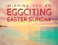 Happy Easter Sunday everyone out there #aruba #arubaonehappyisland #arubabeach #arubalife #sandybeach #beachwedding #summer #casadornasol #vacationrental #homerental #airbnb #airbnbhost #airbnbexperience #caribbean #caribbeansunset #sunset #happyeaster #e (Casa Dornasol) Tags: ifttt instagram facebook