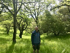 Outstanding In His Field (tmrae) Tags: peakministry parksidechurch hike foresthilldivideloop
