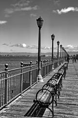 Benches (Ray Cunningham) Tags: san francisco california benches wharf pier black white monochrome