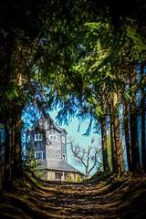 Das Ziel ist in Sicht (A.K. 90) Tags: thüringerwald forest trees building meuselbacherkuppe mitteldeutschland ausflug tourismus tourist wandern hiking wanderung outside bluesky sonyalpha6300 e18135mm3556oss schiefer schiefergebirge