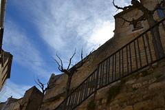 Castell de l'Espluga Calba (esta_ahi) Tags: castel castillo lesplugacalba castle ri510006318 arquitectura architecture esplugacalva lesgarrigues lleida lérida españa spain испания