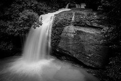 Time together matters (spannerino) Tags: australia blackandwhite contrast d7100 dx landscape monochrome waterfall longexposure buderim sunshinecoast nikon nikond7100 kitlens