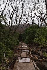 20190417a73_7368 (Gansan00) Tags: ilce7m3 α7ⅲ sony japan 大分 oita 日本 九重連峰 登山 landscape snaps ブラリ旅 04月 fe24105f4 trekking travelphotography 山