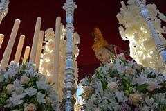Paz de Fátima (beliberri) Tags: semana santa de jerez 2019 cofradia procesion turismo españa spain cultura hermandad la paz fatima lunes santo