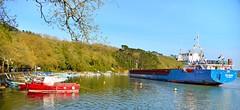 APR_1920_00001 (Roy Curtis, Cornwall) Tags: uk cornwall truro truroriver cargoship riverbank sunnycorner water panorama