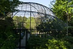La Grande Volière (Mhln) Tags: ménagerie zoo zoologique parc park paris france 2019 animaux sauvages préservation