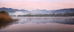 elterwater pastels. (panorama) (akh1981) Tags: panorama amateurphotography beautiful benro cumbria clouds countryside calm dawn elterwater reflections rocks nikon nisi nationalpark nisifilters nationalheritage nature nationalheritagesite nationaltrust mountains morning mist outdoors fog travel tranquil trees uk unesco sunrise landscape lakedistrict lake walking water