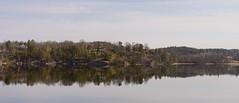 Fleeting moments pt 3 (Mattias Lindgren) Tags: reflection nikon d600 sweden 50mm f18 fleeting moment spring 50mmf18 nikond600 fleetingmoment