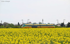 IR 15521 - 21.04.2019 (VictorSZi) Tags: romania astra astratranscarpatic transport train trainspotting spring primavara nikon nikond5300 april aprilie