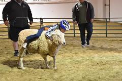 """Baker County Tourism – www.travelbakercounty.com 51482 (TravelBakerCounty) Tags: travelbakercounty easter """"bakercity"""" oregon """"easternoregon"""" """"bakercounty"""" """"easterweekend"""" shriners alkadershrineclub """"shrineclub"""" rodeo """"kidsrodeo"""" """"juniorrode"""" """"jrrodeo"""" smalltowns smalltownfestivals oregonfestivals bakercityoregon """"bakercountytourism"""" basecampbaker """"basecampbaker"""" visitbaker visitbakercity"""