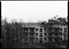 Architecture, N°65 (fuseholder) Tags: kalteplatte platte plattenbau gssdabandoned sovietunionabandoned mamiya645protl ilfordfp4