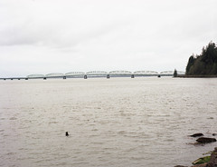 Astoria-Megler Bridge, Washington side, from Dismal Nitch. (Kent C.) Tags: mamiyarb67pros kodakportra400 film filmphotography mediumformat mediumformatfilm 6x7 120film