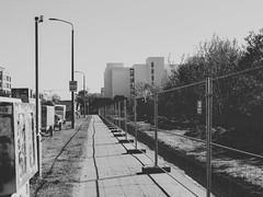 2019-04-21-161655_bw (Schmidtze) Tags: berlin berlinpankow blackandwhite einfarbig neumannstrase olympusem1markii olympusm12100mmf40 pankow schwarzweis stadt strase menschenleer deutschland