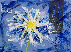 When You're Out of Things to Paint On (BKHagar *Kim*) Tags: bkhagar art artwork painting paint acrylic fingerpainted blue floral flower notebook cover nothingelsetopainton canson