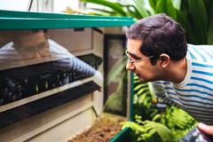 Daniel (Graham Gibson) Tags: sony a7rii voigtlander 40mm f12 nokton fe phipps conservatory pittsburgh gardens