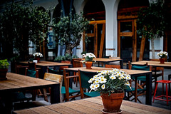 With the first drops (Fnikos) Tags: street bar restaurant coffee architecture building door seat chair table tree plant nature rain drop drops color colour colors green red dark light shadow shadows depthoffield flower flowers shop store outside outdoor