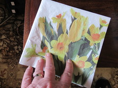 Easter Monday, 22nd, 2019, Buying napkins for Easter IMG_5949 (tomylees) Tags: essex morning spring eastermonday april 2019 22nd carol napkins daffodil