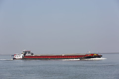 ERTEPELLER (angelo vlassenrood) Tags: ship vessel nederland netherlands photo shoot shot photoshot picture westerschelde boot schip canon angelo baalhoek cargo ertepeller