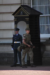 RAF Regiment and army on duty at Buckingham Palace (Ian Press Photography) Tags: buckingham palace guard guards raf regiment duty royal air force