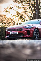 2019 KIA STINGER. (Shaun Mint) Tags: kia stinger automotive korea luxury turbo fast nikon yongnuo 50mm f14 bokeh lightroom lightroompresets flickr photography shaunmintphoto instagram gts