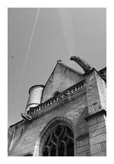Église Saint-Sulpice de Pierrefonds (DavidB1977) Tags: france picardie hautsdefrance oise pierrefonds monochrome bw nb fujifilm x100f château église gargouille
