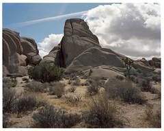 Granite (ADMurr) Tags: california jtnp monzogranite joshua tree national park toyo 4x5 large format 135mm desert kodak ektar expired dba770