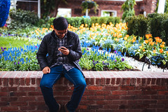 Golf enthusiast (Graham Gibson) Tags: sony a7rii voigtlander 40mm f12 nokton fe phipps conservatory pittsburgh gardens
