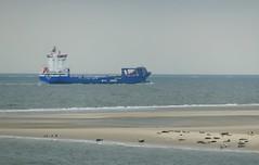 Seal bank (ruedigerdr49) Tags: ship sea nature outdoor