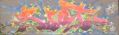 Riot Lakeside 2019 (Zarjaz2009) Tags: essex lakeside spraycan spraypaint art aerosol graffiti