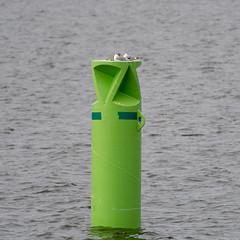 Seaguls at sleep (JarkkoS) Tags: 70200mmf28efledvr animal bird d500 finland helsinki pihlajasaari seagull tc17eii uusimaa