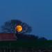 Volle maan in Nutter