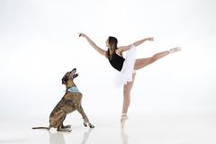 Morgan & Molly (ibsnapn) Tags: dancer ballerina dogsdancers dancestudio