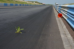 (Sam Tait) Tags: shakespeare raceway avon park long marston airfield deralict derelict urbex abandoned drag race strip dragstrip england shut closed stratford upon county racing dragster track blacktop 2 lane rip shakey memories warwickshire sunny easter monday