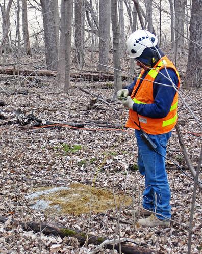 Seismic survey (March 2019) (Licking County, Ohio, USA) 15