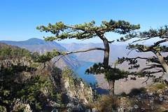 Tara National Park, Serbia (russ david) Tags: tara national park serbia perucac lake landscape balkans trees banjska stena србија srbija republic of република republika travel november 2018