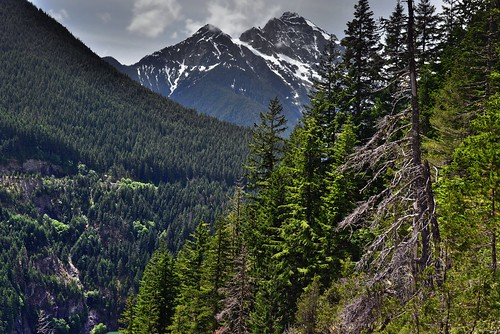 Mountainsides and Mountains Peaks (North Cascades National Park Service Complex)